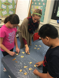 Photo of Students Counting Seeds